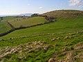 Downland, Bincombe - geograph.org.uk - 734183.jpg