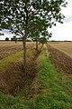Drain near East Field Farm - geograph.org.uk - 1469269.jpg