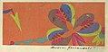 Drawing, Textile Design- Coriandoli (Confetti), 1922 (CH 18629981).jpg