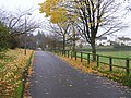 Driveway, Tyrone and Fermanagh Hospital grounds - geograph.org.uk - 1048940.jpg