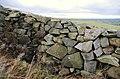 Drystone wall, Drumkeeragh forest - geograph.org.uk - 1584612.jpg
