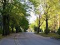 Dubulti - panoramio (26).jpg