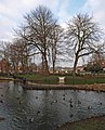 Ducks on the pond - geograph.org.uk - 1096059.jpg