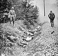 Duitse inval in Polen 1939, Bestanddeelnr 916-8433 (cropped).jpg