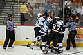 EM NHL-DUCKS VS. SHARKS (2865040162).jpg