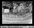ETH-BIB-Ammoniten-Gartenhag bei Benj. Schmidlin, Unter-Riederwald bei Liesberg-Dia 247-13112.tif