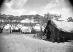 ETH-BIB-Camp Serengeti-Kilimanjaroflug 1929-30-LBS MH02-07-0510.tif