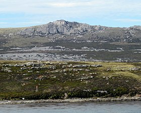 EastFalklandCoast.JPG