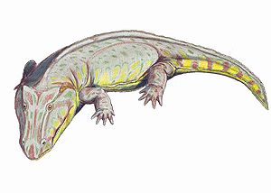 Edopoidea - Life restoration of Edops craigi, the most basal edopoid