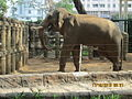 Elephant in its free-roaming enclosure.JPG