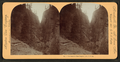 Entrance to Box Canyon, Col., U.S.A, from Robert N. Dennis collection of stereoscopic views.png