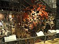 Environment - Indiana State Museum - DSC00385.JPG