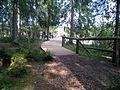 Etang de la Gruere Uferweg.jpg