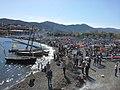 Fête des Vendanges de Banyuls sur Mer (2).jpg
