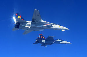 F-14B and FA-18F of VF-VFA-11 Bottom Starboard - 2005.jpg