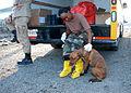 FEMA - 15697 - Photograph by Win Henderson taken on 09-15-2005 in Louisiana.jpg