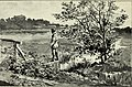 Fair women in painting and poetry (1894) (14577393508).jpg