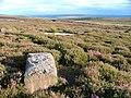 Fallen Standing Stone, Rudland Rigg - geograph.org.uk - 213184.jpg