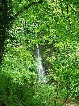 Falling Foss, Sneaton Forest - geograph.org.uk - 267549