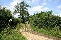 Farm track north of Litcham - geograph.org.uk - 504522.jpg