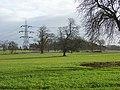 Farmland, Nuneham Park - geograph.org.uk - 717247.jpg