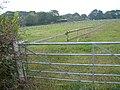 Farmland, Tiptoe - geograph.org.uk - 64432.jpg