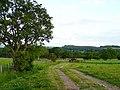 Farmland at Dovecote - geograph.org.uk - 846520.jpg