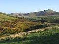 Farmland near Hownam - geograph.org.uk - 1546889.jpg