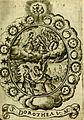 Fasti Mariani cum illustrium diuorum imaginib. and elogijs prope DC. in singulos anni menses diésq SS. natales distributis (1630) (14559169389).jpg