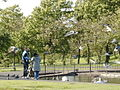 Feeding Swans (and gulls and pigeons) - geograph.org.uk - 444120.jpg