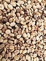Fermented coffee beans.jpg