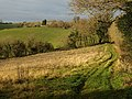 Field at head of Cockington valley - geograph.org.uk - 1079982.jpg