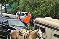 Fiestas Patrias Parade, South Park, Seattle, 2015 - preparing the horses 21 (21561662111).jpg