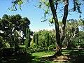 Filoli gardens - IMG 9348.JPG