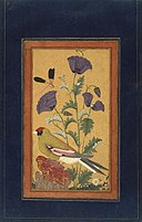 Finch, Poppies, Dragonfly, and Bee India (Deccan, Golconda).jpg