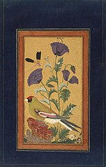 Finch, Poppies, Dragonfly, and Bee