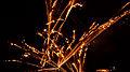 Fireworks (6613876373).jpg