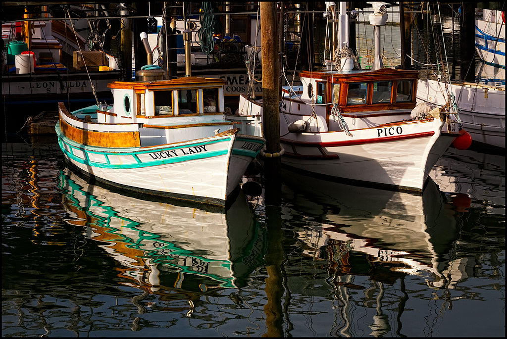 Original file 1 793 1 200 pixels file size mb for Fishing store san francisco
