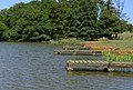 Fishing platforms, Belvoir Lower Lake - geograph.org.uk - 28126.jpg