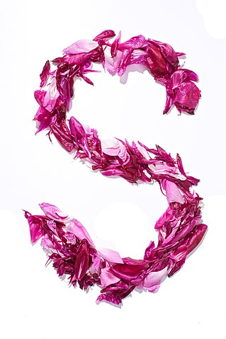 S Alphabet In Flowers Original file ‎ (2,832 × 4,256 pixels, file size: 1.82 MB, MIME ...