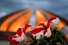 Focused Flower infront of Pakistan Monument No 1.JPG