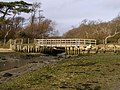 Footbridge over Plummers Water, New Forest - geograph.org.uk - 302662.jpg