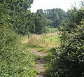 Footpath between Column Field Quarry and Cottage Farm - geograph.org.uk - 930764.jpg