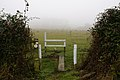 Footpath in the mist - geograph.org.uk - 259706.jpg