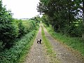 Footpath opposite Broadlaw Farm - geograph.org.uk - 515776.jpg