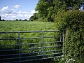 Footpath taken from the lane to Coole Hall Farm - geograph.org.uk - 438341.jpg