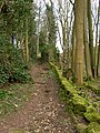 Footpath to Gospel End - geograph.org.uk - 364581.jpg