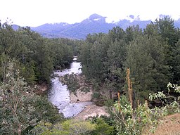 Forbes River (New South Wales).jpg