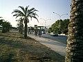 Foro Umberto I - Palermo - panoramio.jpg