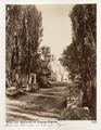 Fotografi från Arles - Hallwylska museet - 107232.tif
